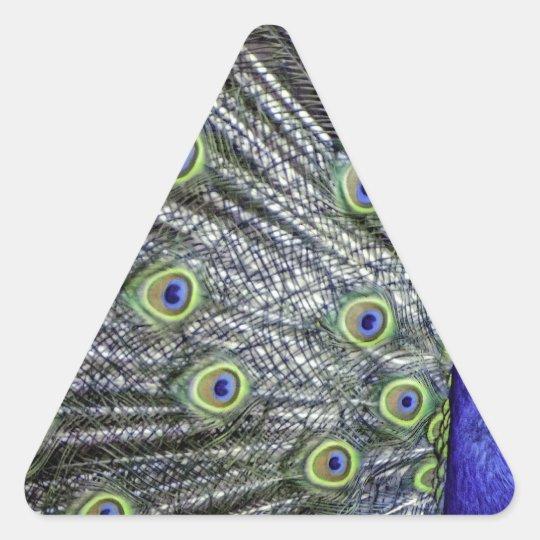 Pavo real impresionante pegatina triangular