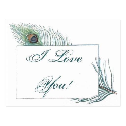 Pavo real inspirado de la cita romántica del amor postal