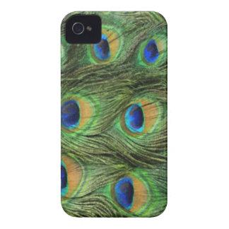 Pavo real Iphone animal 4 casos Case-Mate iPhone 4 Funda