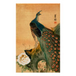Pavo real japonés no.2 póster