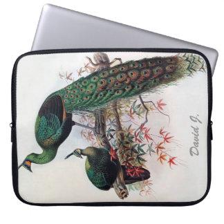 Pavo real, muticus 1872 del pavo del peafowl funda ordendadores
