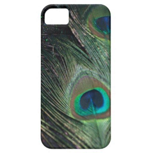 Pavo real negro del arco iris funda para iPhone SE/5/5s