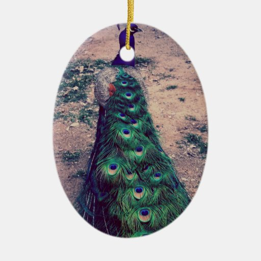 Pavo real real adorno navideño ovalado de cerámica