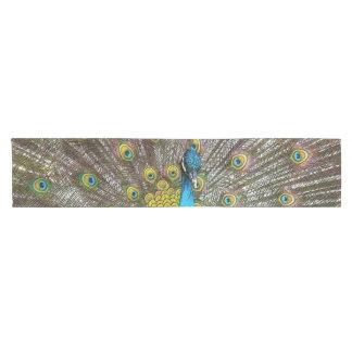 Pavo real real con el azul del trullo y el plumaje camino de mesa corto