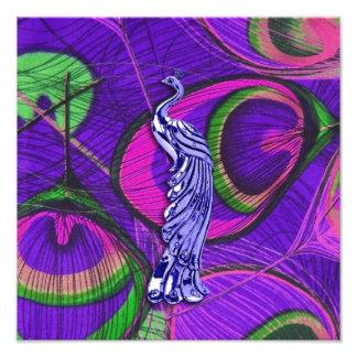 Pavo real rosado y púrpura impresiones fotográficas