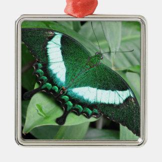 (Pavo real) Swallowtail esmeralda Adorno Navideño Cuadrado De Metal