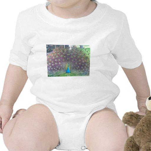 Pavo real trajes de bebé