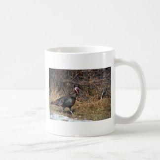 Pavo salvaje de Merriams, gobbler Tazas