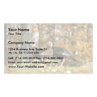 Pavo salvaje tarjeta de visita