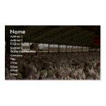 Pavos en un granero de las aves de corral plantilla de tarjeta de negocio