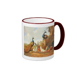 Pavos reales y taza de café de los pollos