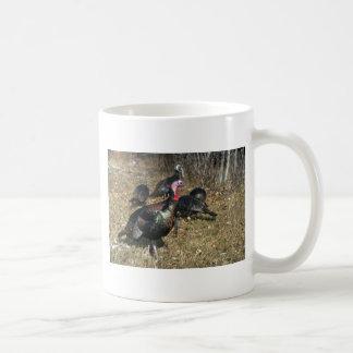 Pavos salvajes de Merriams, gobbler grande y multi Taza