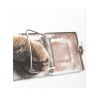 Paw in mousetrap notepad