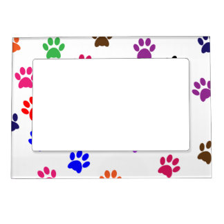 paw print dog pet colorful pattern background magnetic photo frame - Dog Frame
