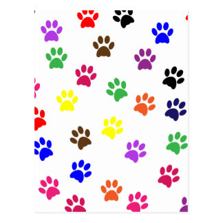 Paw print dog pet fun colorful postcard