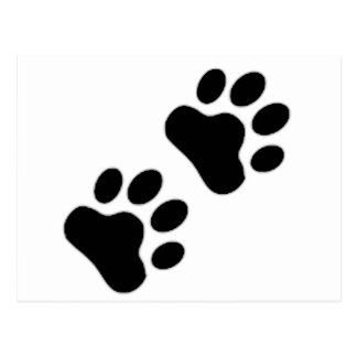 Paw Print Post Cards