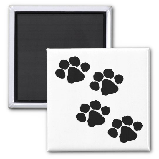 Paw Prints 2 Inch Square Magnet
