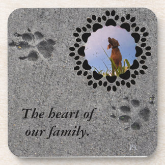 Paw Prints and Photo Beverage Coaster