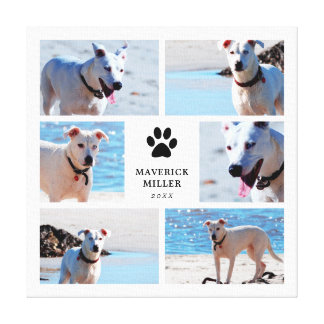 Paw Prints - Dog Photo Collage