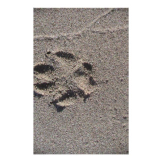 Paw Prints in Sand Stationery