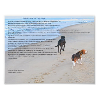 """Paw Prints in The Sand 8.79"""" x 6.59""""  Print"""