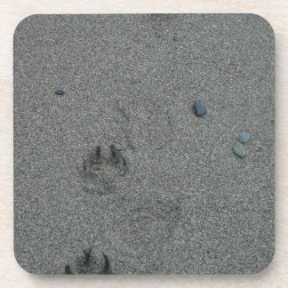 Paw Prints in the Sand Drink Coasters