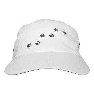 Paw prints of a cat hat