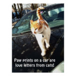 Paw Prints On A Car Are Love Letters From Cats Poster