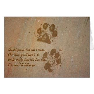 Paw Prints on Stone Note Card