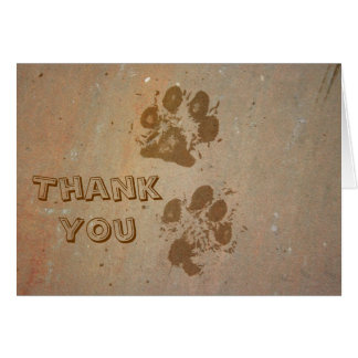 Paw Prints on Stone Thank You Note Card