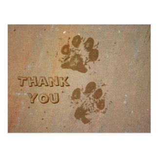 Paw Prints on Stone Thank You Postcard