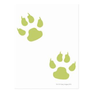 Paw Prints Postcard