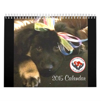 Pawfect Match 2015 Calendar