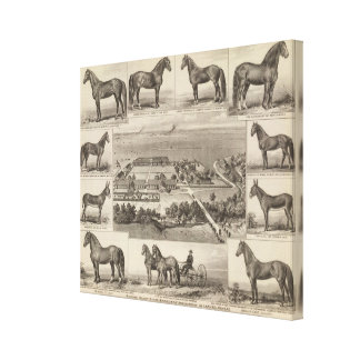 Pawnee Valley Stock Breeders' Association, Kansas Canvas Print