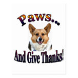 Paws and give thanks postcard