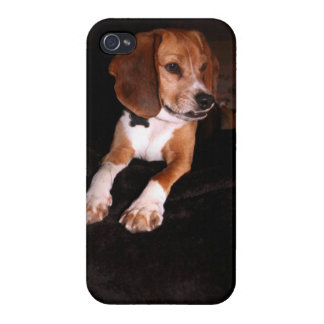 Paws Case For iPhone 4