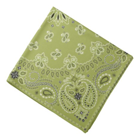 Paws-for-Style Pawsley Bandana