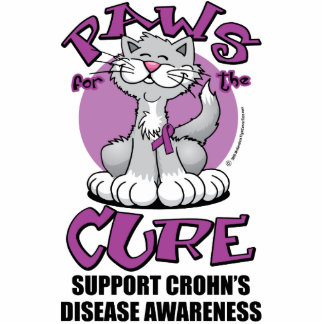 Paws for the Cure Cat Crohn's Disease Photo Sculpture