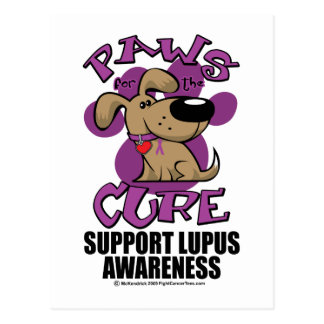Paws for the Cure Lupus Postcard