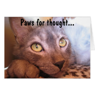 Paws For Thought Eyes Stationery Note Card