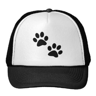 Paws Hats
