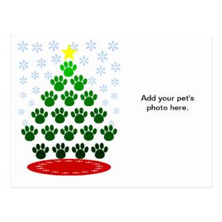 Paws Here Christmas Tree Postcard