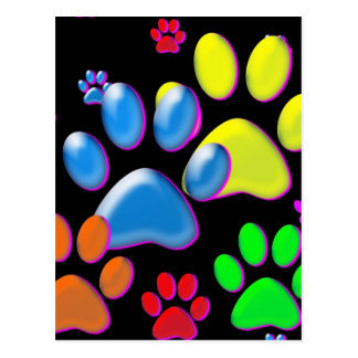 Paws Post Card