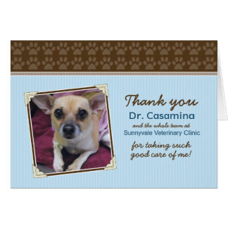 Paws Thank You Card for the Vet (baby blue/brown) Greeting Card