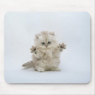 Paws up mouse pad