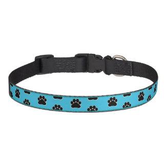 Pawsibly Pet Collar - Turquoise Medium