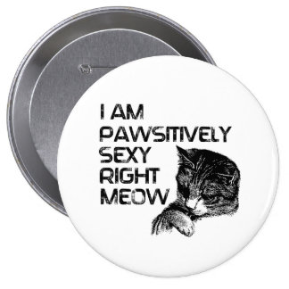 Pawsitively Se xy Right Meow Buttons
