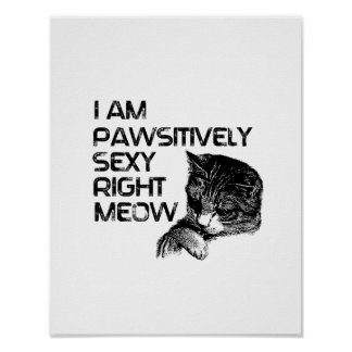 Pawsitively Se xy Right Meow Print