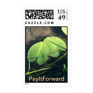 Pay It Forward Stamps and Matching Postcards