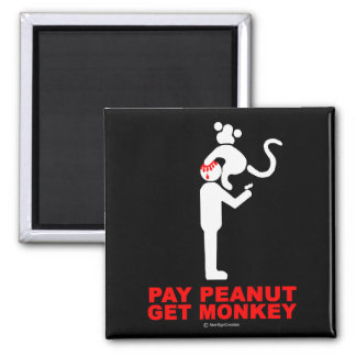 Pay peanut, get monkey 2 inch square magnet